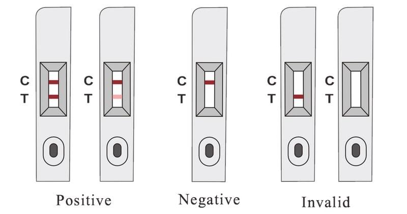 lituo covid 19 antigen detection kit (colloidal gold) self test kit result